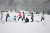 Opolanie ruszyli na sanki do parku na osiedlu Armii Krajowej  - 8573_zima_24opole_0264.jpg