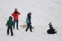 Opolanie ruszyli na sanki do parku na osiedlu Armii Krajowej  - 8573_zima_24opole_0303.jpg