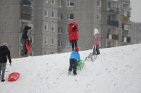 Opolanie ruszyli na sanki do parku na osiedlu Armii Krajowej  - 8573_zima_24opole_0332.jpg