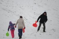 Opolanie ruszyli na sanki do parku na osiedlu Armii Krajowej  - 8573_zima_24opole_0336.jpg