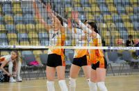 UNI Opole 3:0 Stal Mielec - Finał PLAY OFF  - 8625_foto_24opole_0218.jpg