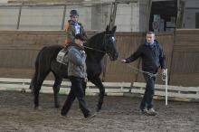 Niepełnosprawni rywalizowali w jeździectwie