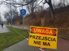 """""""Barbarzyństwo"""" wokół dworca wschodniego. Zniknie 1248 drzew"""