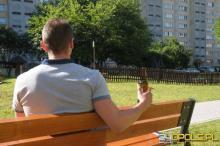 """Będzie można napić się """"piwka"""" w parku? Radni PO szykują uchwałę"""
