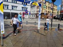 Miasto przygotowane na upalne dni. Działają już kurtyny wodne