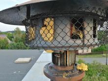 Strażakom z OSP Ochodze uszkodzono wyposażenie remizy