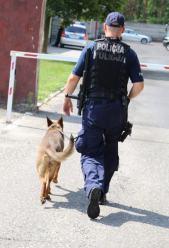 Włamał się do sklepu, wytropił go policyjny pies