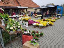 Jezuita zaproponował, żeby nie kupować zniczy i kwiatów, a pieniądze poświęcić żywym..
