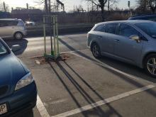 Nowe drzewa uniemożliwiają parkowanie. Problem w pobliżu przychodni na ul. Armii Krajowej