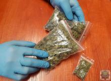 26-latek wytworzył ponad 6 kg marihuany, tłumaczył, że nie miał zamiaru sprzedać narkotyku