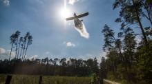 Duże zagrożenie pożarowe w lasach województwa opolskiego