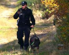 """Razem z psem """"Foksi"""" odnaleźli zaginionego już po godzinie"""