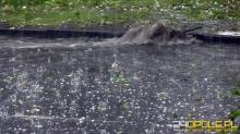 Meteorolodzy ostrzegają przed burzami z gradem. Wydano ostrzeżenia dla 12 powiatów