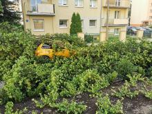 Ponad 150 interwencji straży. Służby ratunkowe usuwają skutki nawałnicy w Opolu