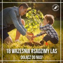 Odbierz sadzonkę i posadź swój las. Nadleśnictwo Opole włącza się do akcji SadziMy
