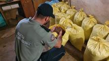 Krajowa Administracja Skarbowa zlikwidowała nielegalną wytwórnię tytoniu