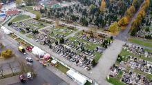"""Producenci i sprzedawcy kwiatów """"cmentarnych"""" mogą liczyć na wsparcie finansowe. Co zrobić?"""