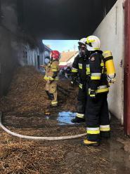 12 zastępów straży gasiło pożar chlewni w gminie Głogówek