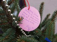 Choinka życzeń bezdomnych i potrzebujących stanęła w Opolu. Każdy może zrobić prezent