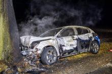 Ford uderzył w drzewo i stanął w płomieniach