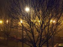 Gęsta mgła nad Opolszczyzną. Meteorolodzy wydali ostrzeżenia