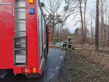 Strażacy usuwają skutki silnego wiatru na Opolszczyźnie