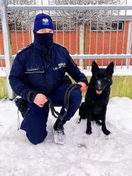 Nowy pies w służbie strzeleckiej policji