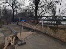PKP PLK bezprawnie usunęła drzewa na Pasiece? Miasto zgłasza sprawę organom ścigania