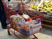 Za podstawowe zakupy płacimy coraz więcej. Wiele zaoszczędzić można szukając promocji