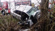Pijany kierowca uderzył w drzewo. Pasażerka zmarła w szpitalu