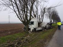 Samochód ciężarowy z naczepą uderzył w drzewo. Zdarzenie w powiecie strzeleckim