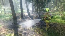 Strażacy gasili pożar w lesie w Kotorzu Małym