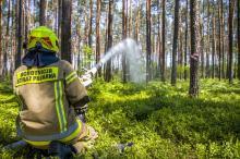 9 na 10 pożarów leśnych wywołanych jest przez działalność człowieka