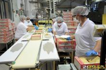 Coraz więcej firm i samozatrudnionych płaci składki w ZUS
