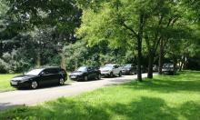 """Samochody niszczą """"zielone płuca"""" Opola. Mieszkańcy apelują o opamiętanie się"""