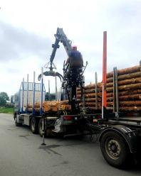 Przewóz drewna pod lupą WITD. Kontrole wykazały nieprawidłowości