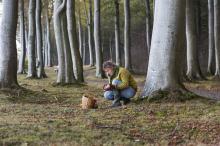 Przeczytaj, zanim wybierzesz się do lasu. Coraz więcej zgłoszeń