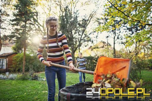 Co we wrześniu należy zrobić w ogrodzie? Czas poważnych porządków