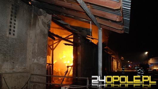 Seria groźnych pożarów na Opolszczyźnie