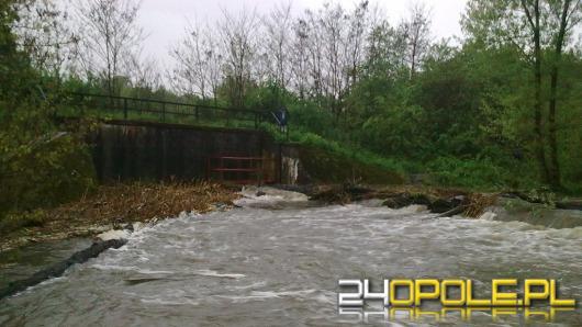 Fala powodziowa na Odrze