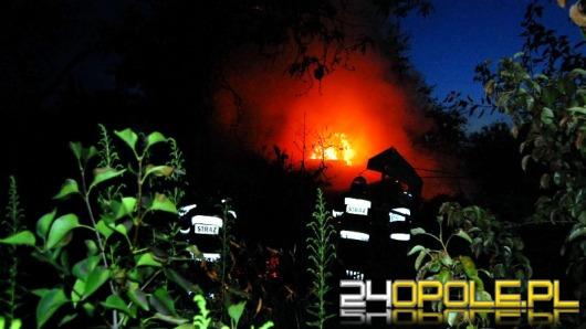 Pożar na terenie ogródków działkowych