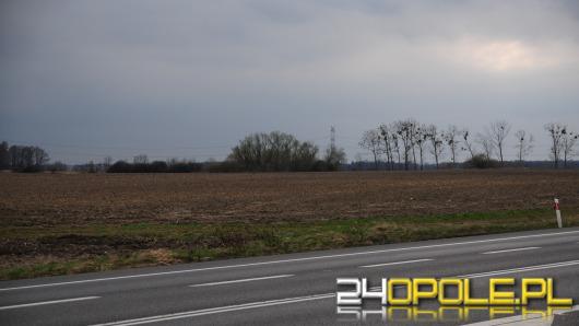 Opole chce ściągać inwestorów do gminy Dąbrowa