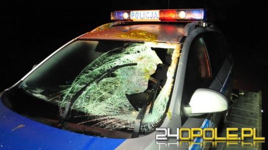 Policjant ranny po zderzeniu radiowozu z sarną