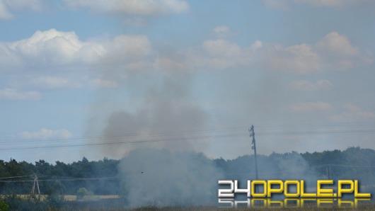 Strażacy gaszą płonące ścierniska i zboża na Opolszczyźnie