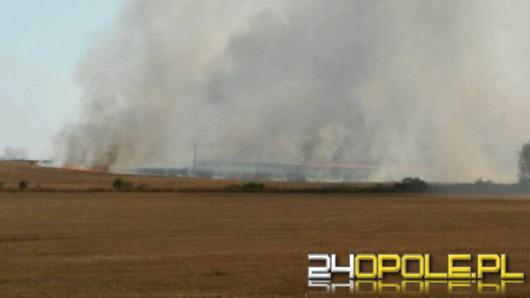 Ponad 20 pożarów ściernisk i suchych traw na Opolszczyźnie