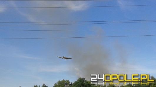 Strażacy walczą z pożarem przy obwodnicy Opola