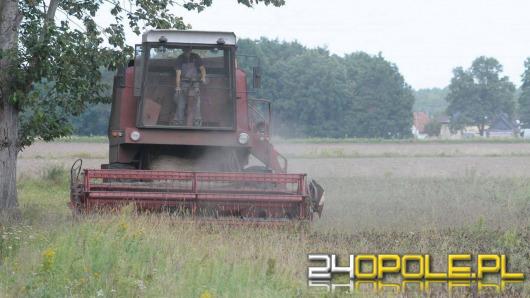 Tegoroczne lato nie oszczędza rolników