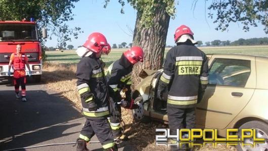Fiat punto uderzył w drzewo. Kierująca zginęła.