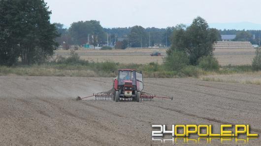 """Żniwa dla opolskich rolników """"dobre, ale nie rekordowe"""""""
