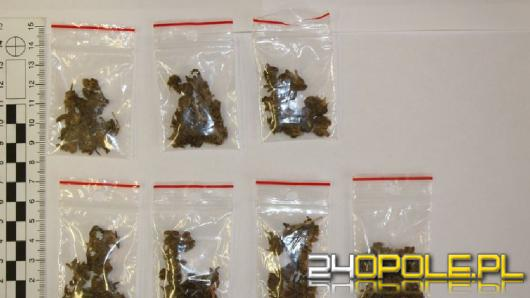 860 krzewów i 90 gramów marihuany zabezpieczyli policjanci z Nysy